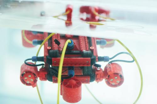 Red Water Robot in Tank