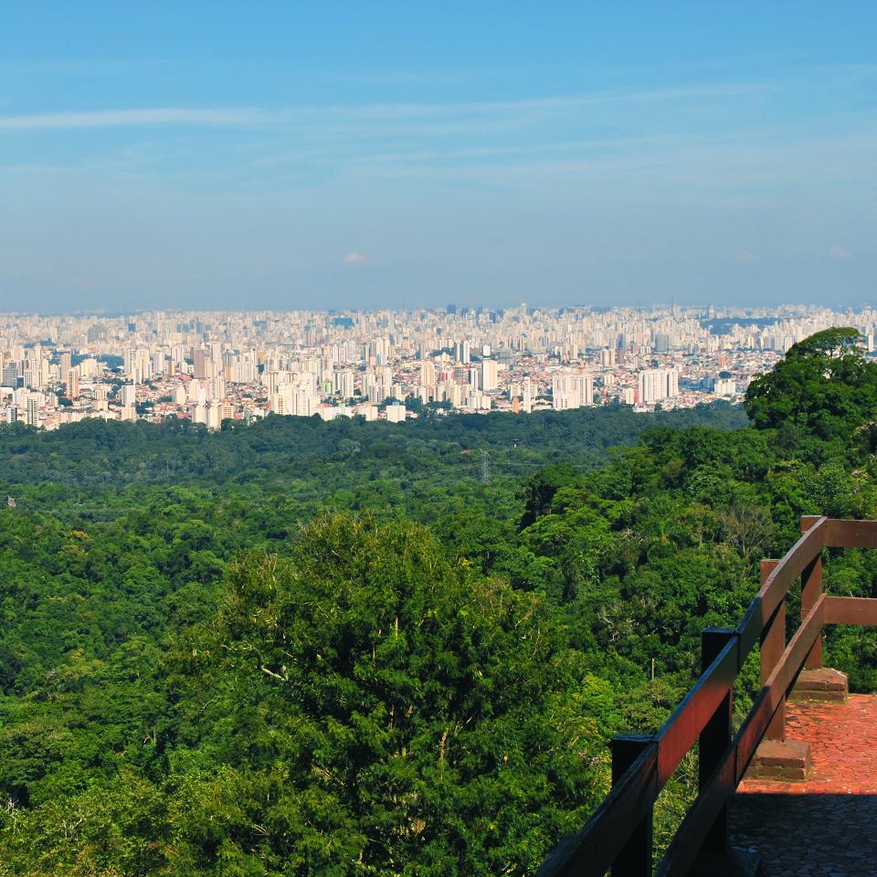 Conheça o Núcleo Pedra Grande no Parque Estadual da Cantareira em São Paulo