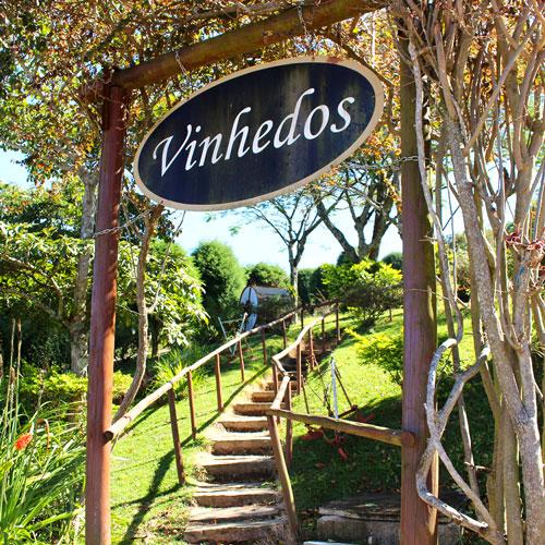 Conheça o Roteiro do Vinho em São Roque
