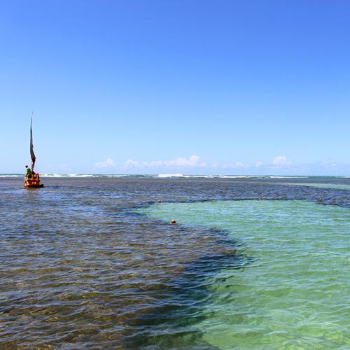 Conheça a Praia de Porto de Galinhas em Pernambuco