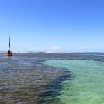 Conheça a Praia de Porto de Galinhas