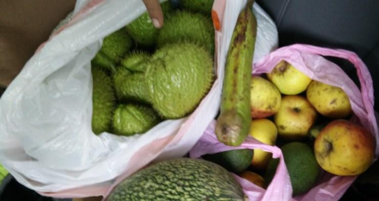 vegetales y frutas de agradecimiento