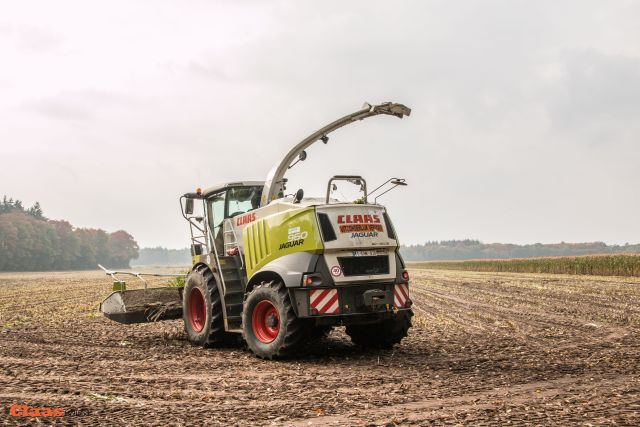 Landbouwer Cools uit Meerhout, België3