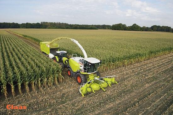 Claas Orbis 600 SD een succes in de Nederlandse mais oogst.