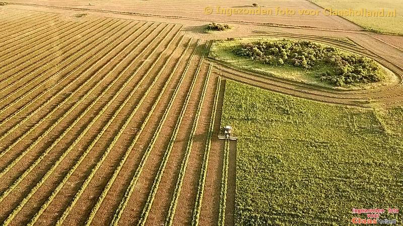 mowing alfalfa with Claas Xerion 4500 in Argentina. Met Nederlandse tekst.