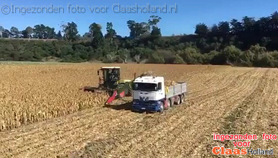 Corn cob harvest with a Claas Xerion in New Zealand.