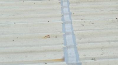 Cut Edge Corrosion Protective Tape
