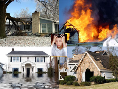 why you need a public adjuster