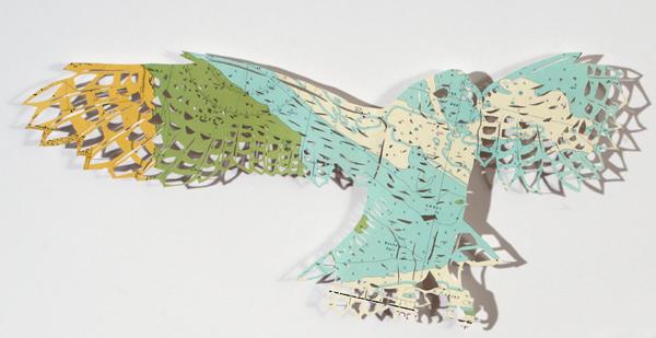 coda_owl1