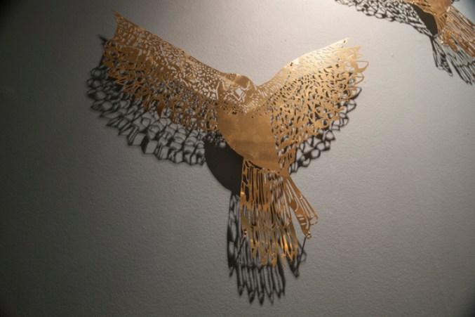 clairebrewster_sparrowhawks_closeup