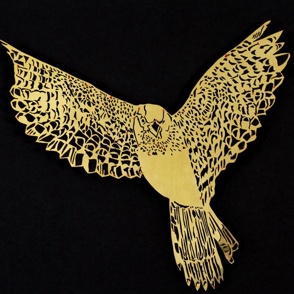 Clairebrewstr Sparrowhawk Thumb