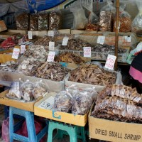 Thai fish market