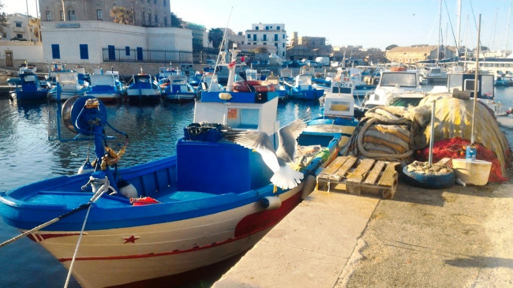 barche a favignana, un'isola da visitare con i bambini