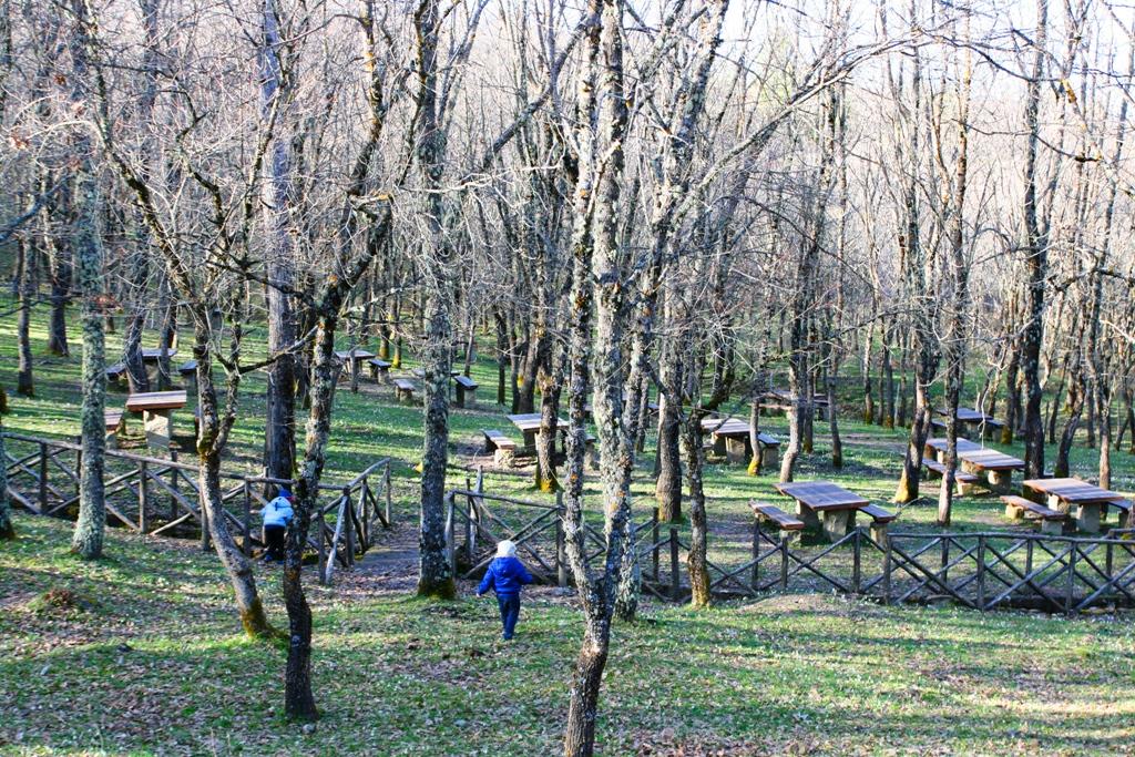 bambini che giocano in un bosco per pasquetta