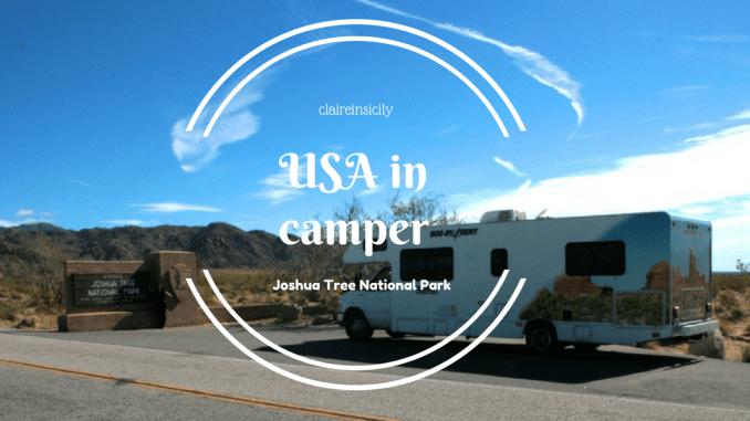 stati uniti in camper-ingresso joshua tree national park