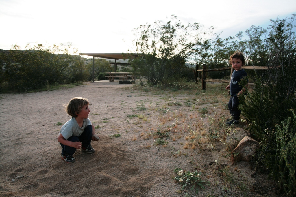 bambini che giocano al Joshua Tree National Park negli stati uniti