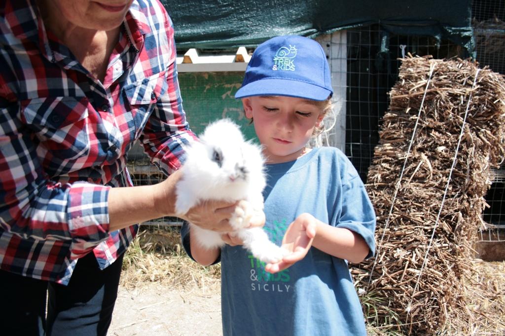 un bambino che tiene in mano un coniglietto