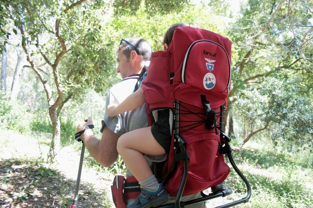 papà e bimbo che fanno trekking