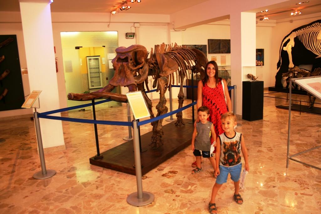 una famiglia al museo geologico gemmellaro