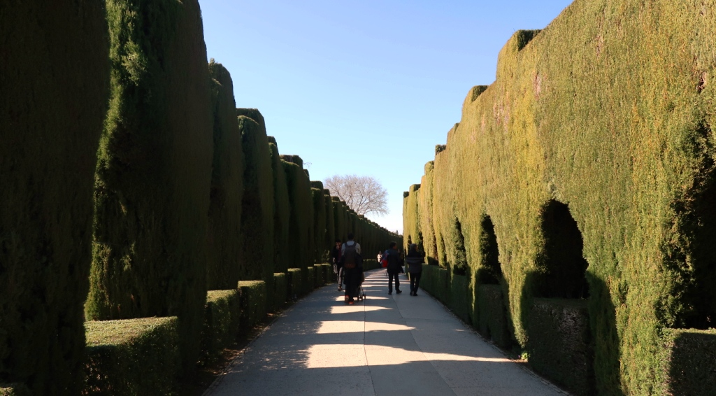 viale alberato Alhambra