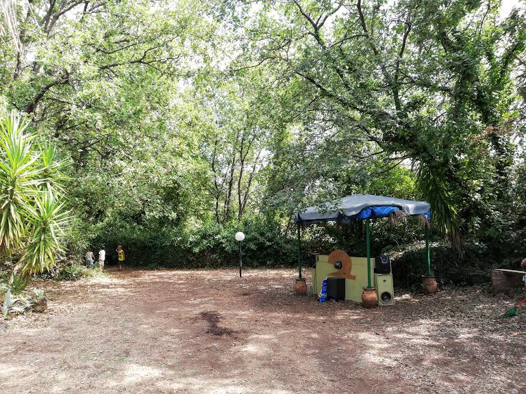 area picnic con alberi vicino alcantara