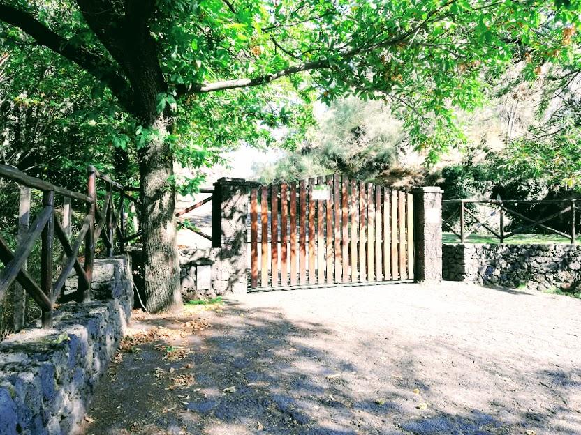 ingresso forestale monte concilio