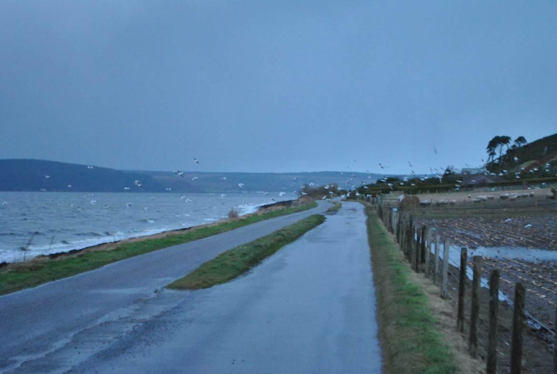 Loch Ness, Ecosse (1)
