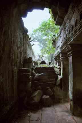 Ta Prohm angelina jolie cambodge temples angkor