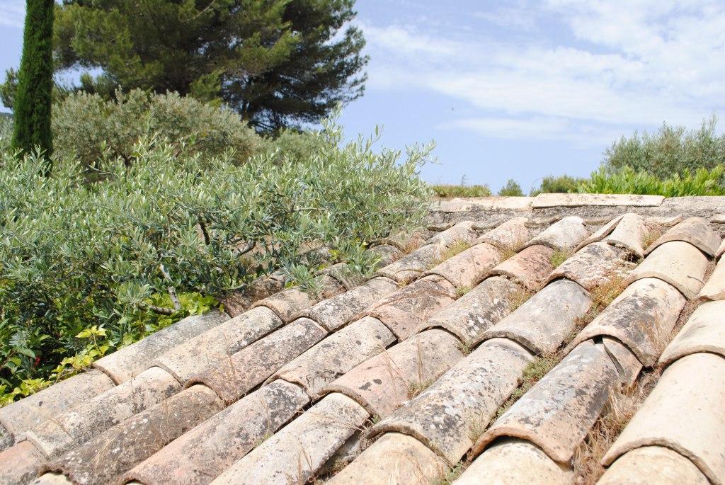 oppède le vieux Provence ALpes Côte d'Azur (5)