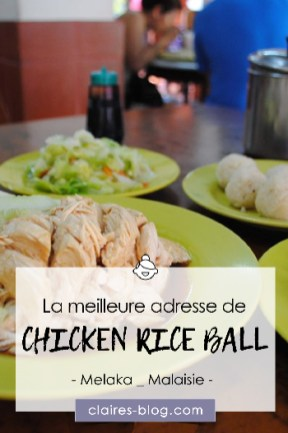 La meilleure adresse pour les chicken rice ball Melaka Malaisie #malaisie #voyage #melacca #melaka #chickenriceball