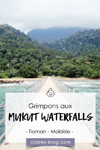 Grimpons aux Mukut Waterfalls - Malaisie - Tioman #mukut #waterfalls #tioman #malaisie #voyage