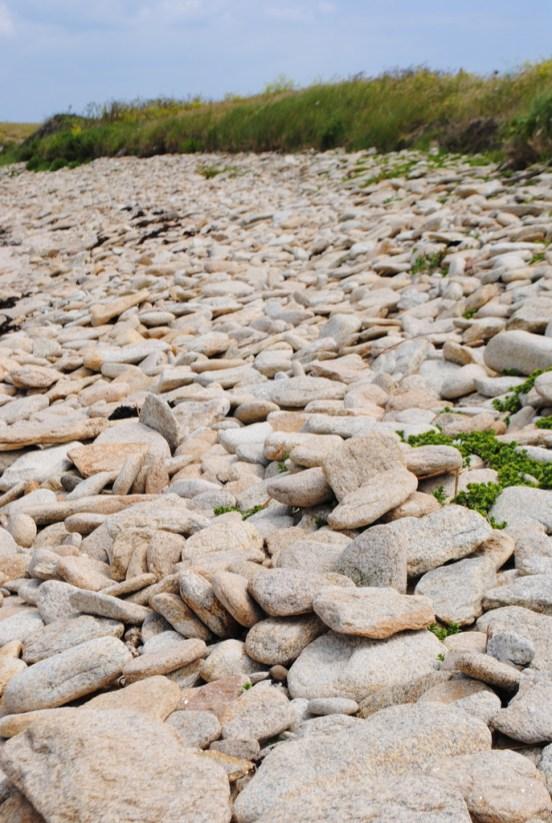 côte sauvage de quiberon morbihan bretagne