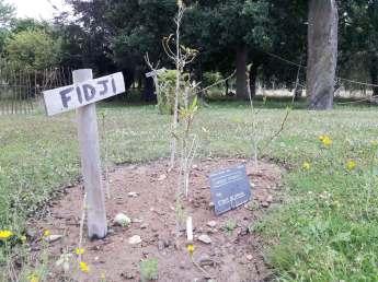 la-planete-plantes-en-voie-d'extinction-yves-rocher-jardin-botanique-la-gacilly-(4)