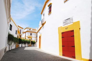 arenes séville espagne andalousie plaza de toros (6)