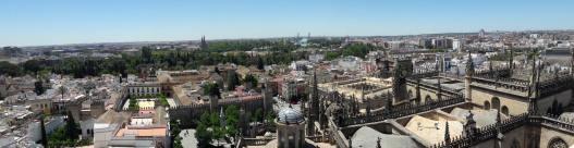 cathédrale seville espagne andalousie (4)
