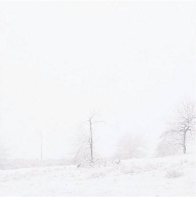 seattle neige
