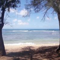 kauai-hawaii-clairesblog-(17)