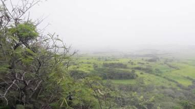 kauai-hawaii-clairesblog-(268)