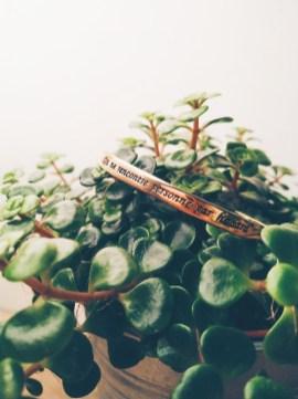 idées cadeaux saint valentin onecklace (1)