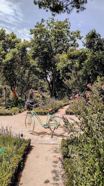 parc du Thabor rennes