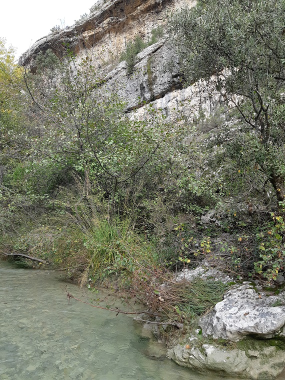 My secret place in #Provence South of France #discoverFrance and travel