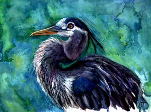 Watercolor painting of Blue Heron