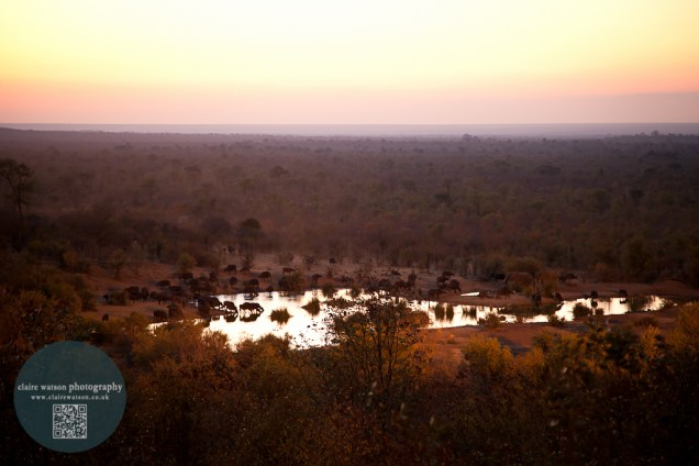 Sun going down on the waterhole and the end of a fabulous weekend.