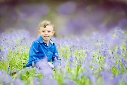 An abundance of bluebells in Sussex…