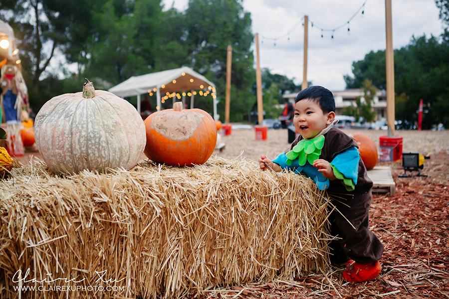 Thousand_Oaks_Pumpkin_Patch-8482-s
