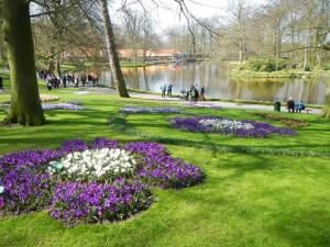 Parc de Keukenhof