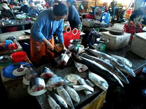 Le marché au poissons de Hoi An