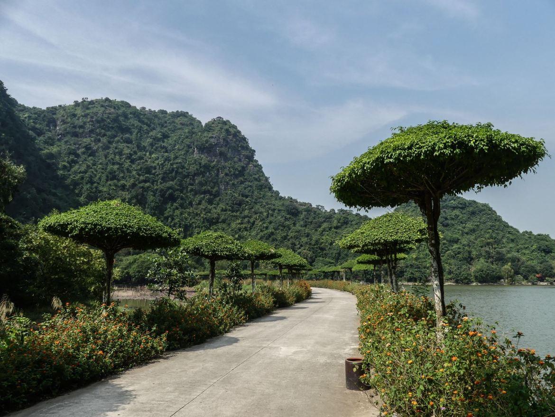 Jardin des oiseaux de Thung NhamhNinh Binh - Tam Coc - Baie d'Halong terrestre