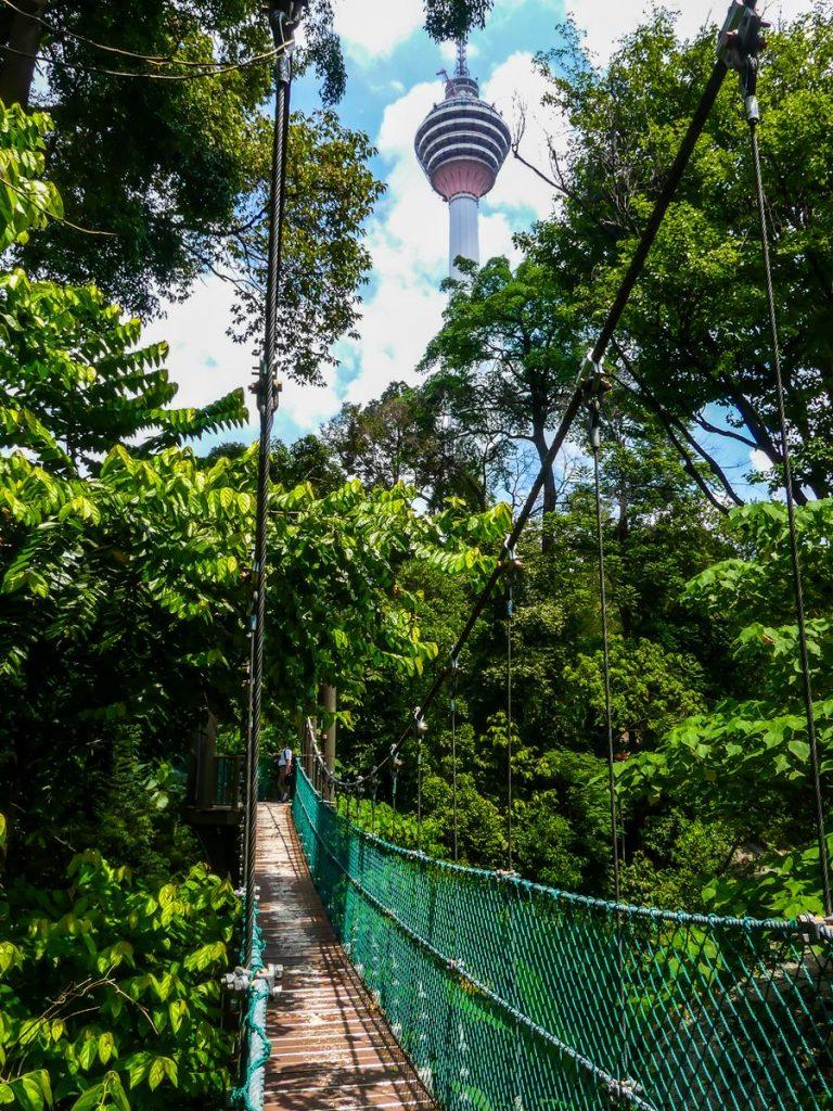 Kuala Lumpur - Eco Forest