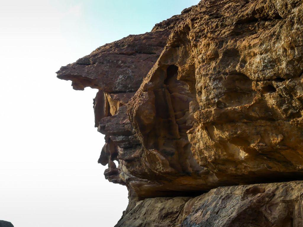 Tête de sanglier dans la roche